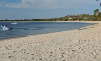 Palm Fringed Beaches